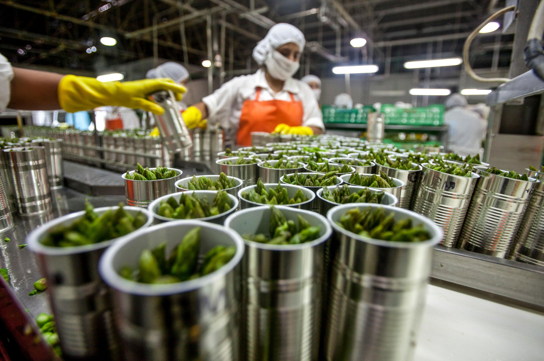 Innovación, clave para impulsar la agroindustria en Aguascalientes - Líder  Empresarial