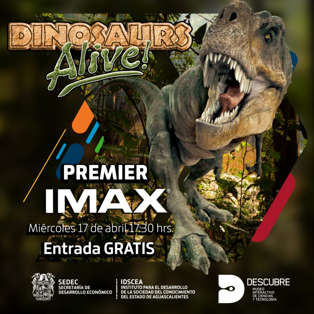 Descubre Presenta Su Nueva Pelicula Imax Dinosaurios Vivos Lider Empresarial En esta actividad, los estudiantes evalúan y discuten afirmaciones acerca de la relación evolutiva entre las aves y los dinosaurios, antes y después de ver el cortometraje grandes transiciones: imax dinosaurios vivos